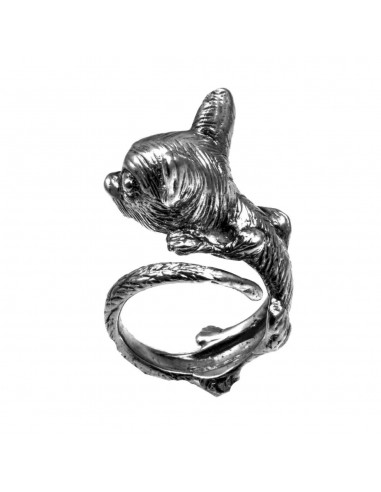 Chihuahua Ring by Cristian Fenzi Florence Italy 1